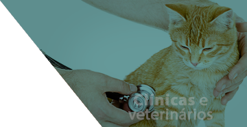 clinicas e veterinarios